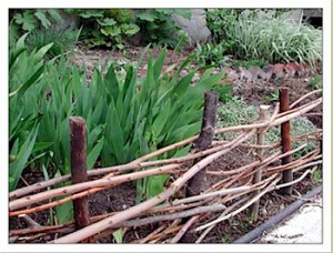 Save spring prunings for edging and fairy house construction material
