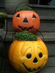 Plastic pumpkin head Chia Pets