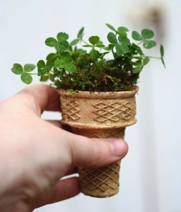Ice cream cones as seedling starter cups